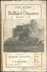 The Story of the Bellbird Disaster